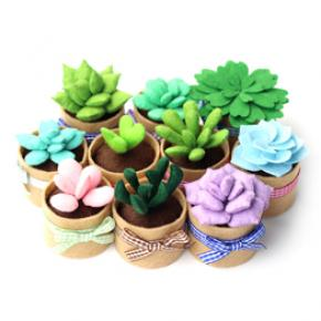 Non-woven Fabric Succulents Plant Supplies Needle Sewing Kit